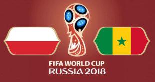 Pologne Sénégal Coupe du Monde