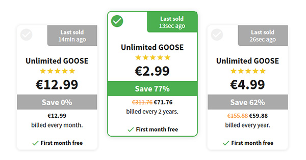 Tarifs Goose VPN